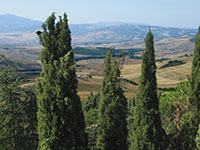 The view from Pienza